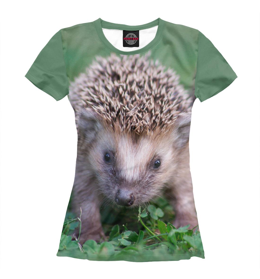 «Ежик» — футболка женская, артикул: EZH-462505-fut-1